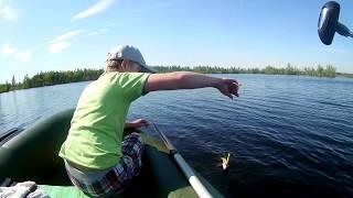 С Максом на озере и его первая пойманная щука 5 щук в жару на воблера Jackall Rerange 110SP Allbue