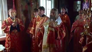 видео: Панихида по митрополиту Тульскому и Белевскому Серапиону (Фадееву)