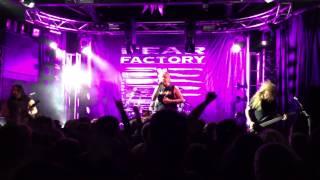 Fear Factory Live Adelaide -  Replica