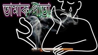 tamak pata 2 cover with ashes bangladesh 2018 new version