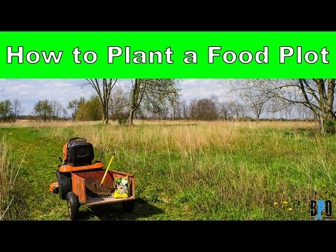 How to Plant a Food Plot - Small Land Deer Management