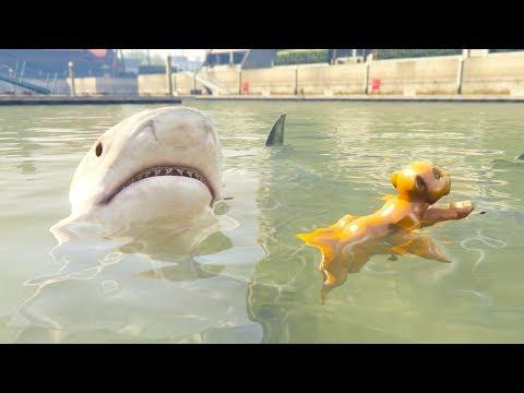 KIARA MEETS SHARKS