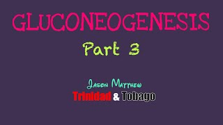Gluconeogenesis Part 3