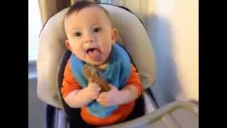 Baby Led Weaning - Beef Short Ribs - 7 Month Old