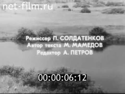 Спецвыпуск «Город Ярцево».