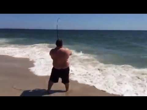 Shark @ Robert Moses 2015