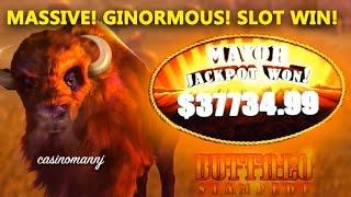 $37,734.99 BUFFALO STAMPEDE SLOT MAJOR PROGRESSIVE WIN!!! - MASSIVE WIN! - Slot Machine Bonus