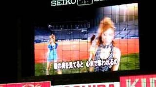 "08/10/04 DAD'S ""Swallows Paradise"" live@Jingu Stadium"