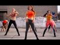 Birds Sia Bird Set Free The Golden Pony Remix mp3