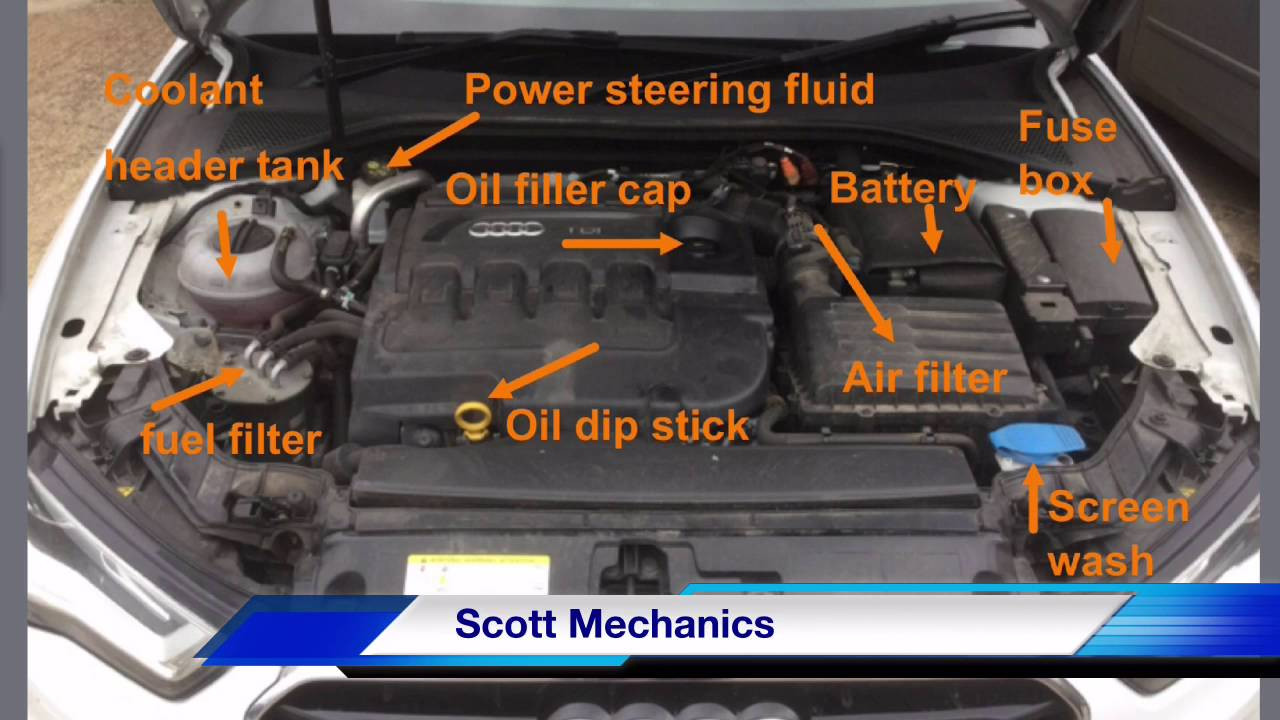 hight resolution of audi a3 service oil filter location 1 6 tdci 2014 youtube