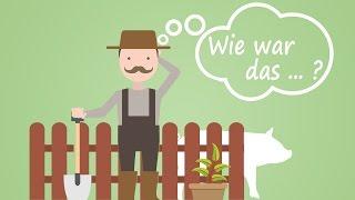 """[""""LS15 Schweine"""", """"Stappenbach"""", """"Stappenbach TuT""""]"""