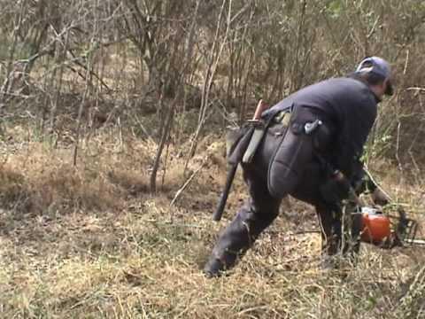 Treasure Hunters In North Carolina Using The Electroscopes