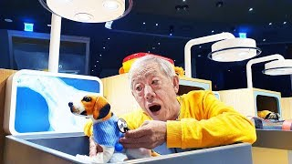 아픈 강아지를 돌봐주어요!! 꿀잼 타이니 키즈파크 Save the Puppy play indoor playground for kids   로미유스토리 Romiyu