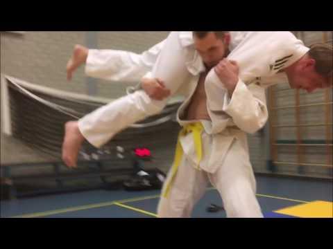 Mannequin Challenge Judo Ryu Ichidai