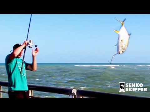 The Craziest Pier Fishing in America: Sebastian Pier, Florida