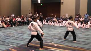 Korea Taekwondo Black Belt Test 2015 Teaser