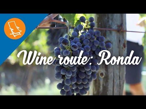 Wine route: The bodegas of Ronda