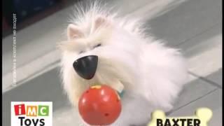 Собака Бакстер - Интернет-магазин игрушек