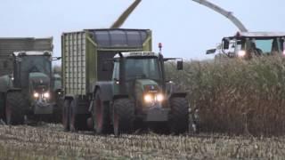 ciągnik w akcji - Traktor Web