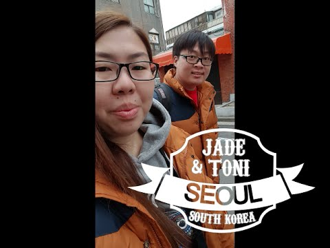 Travel Vlog: Seoul, South Korea # 2 | EVERLAND & N SEOUL TOWER