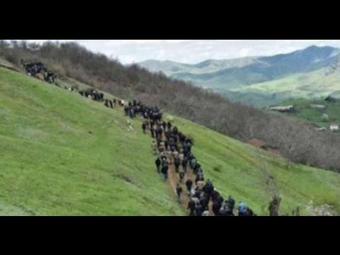 Cebhede son veziyyet-Atəşkəsdən sonra Talış kəndi-ermeniler qacir