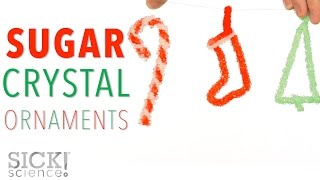 Sugar Crystal Ornaments - Sick Science! #220