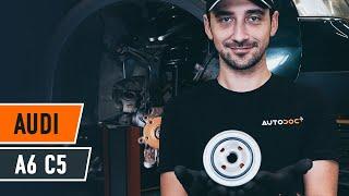 Hur byter man Fjäderbenslager AUDI A6 Avant (4B5, C5) - online gratis video