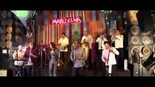El Yerbero Moderno • Alquimia la Sonora del XXI - youtube music awards