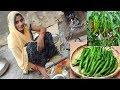 जब हो जाए रोज की सब्जी से बोर ,बनाएं चटखदार दही के साथ बेसन हरी मिर्च Dahi wali mirch Recipe