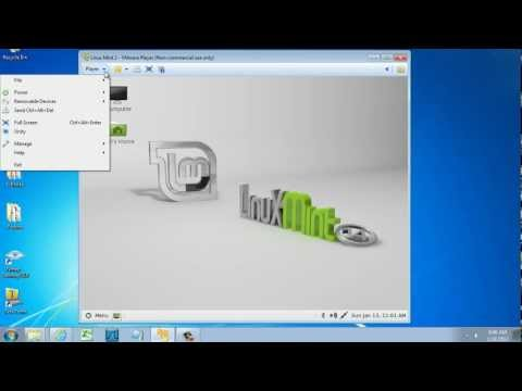 VMware Linux Mint in Full Screen with VMware Tools - YouTube