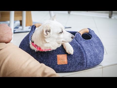 Pet Baskets For Happy Pets: Life@pp