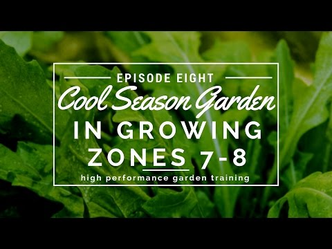 How To Grow Cool Season Garden In Zones And