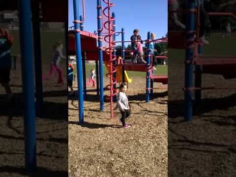 Coco  down the slide, lake Grove school, 2/2015