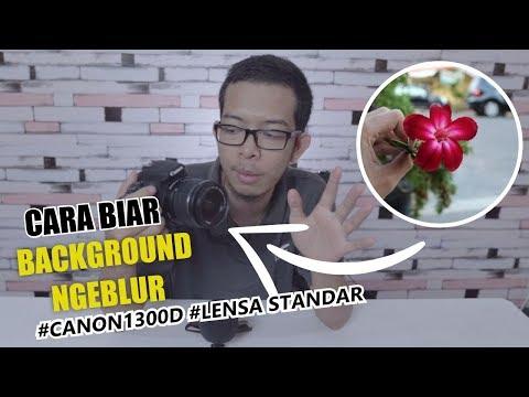 Cara Foto Biar Background Ngeblur Bokeh Pake Canon DSLR EOS 1300D Dengan Lensa Kit