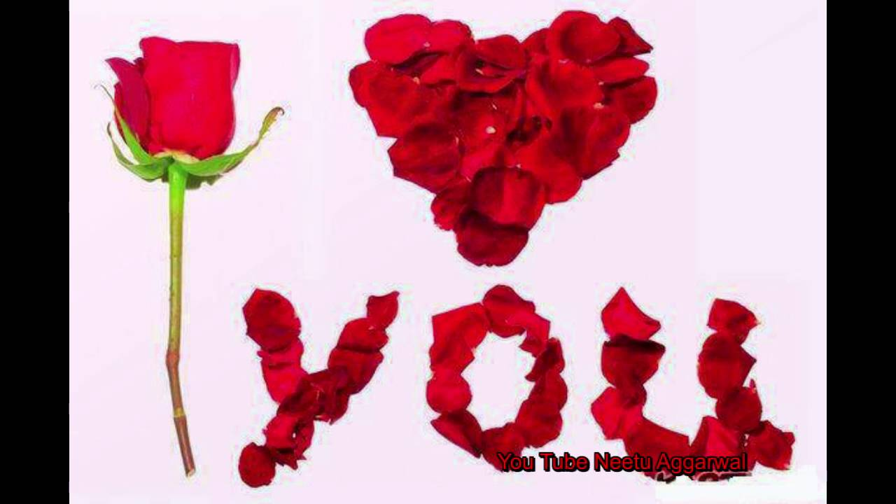 Happy Rose Day Wishesquotessmsgreetingssayinge Cardwallpapers