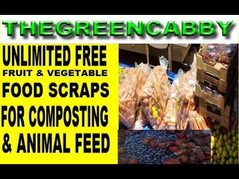UNLIMITED FREE FRUIT & VEGETABLE FOOD SCRAPS - HOW TO COMPOST ON A BUDGET & FEED ANIMALS