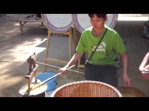Making Thai Silk: From Silkworm to Fabric