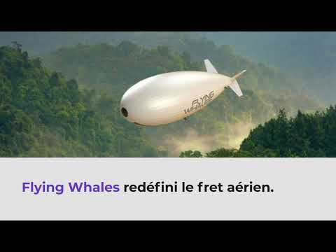 Case study - FLYING WHALES LCA60T - FR