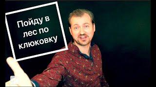 Смотреть клип Алексей Петрухин & Губерния - Пойду В Лес По Клюковку