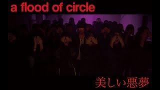 美しい悪夢 - a flood of circle