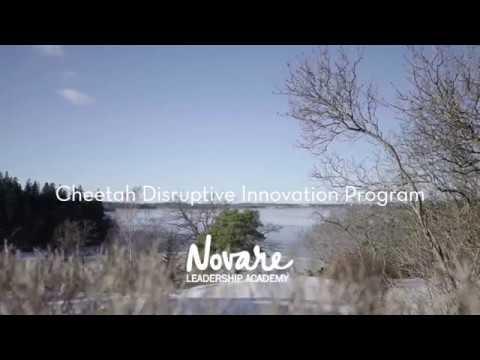 Cheetah Disruptive Innovation Program by Novare Leadership Academy