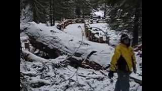 General Sherman Tree Broken Branch (2006)