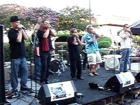 Harmonica Finale, Music under the Star, Austin, TX