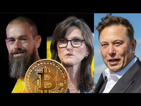 Elon Musk, Jack Dorsey & Cathie Wood on Bitcoin at The B Word Conference: FULL Reupload - 7/21/2