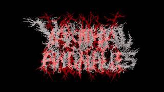VAGINAL ANOMALIES - Morbid Defecation (Prueba)