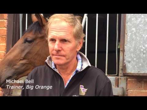 Michael Bell on Big Orange ahead of the Champions Series Qatar Goodwood Cup