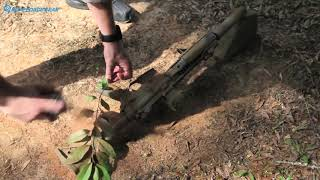 How To : Camo Paint a Rifle - Short Version