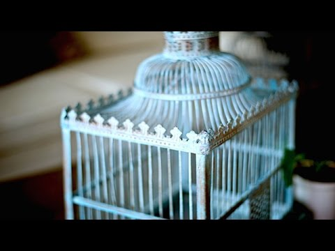 Gor-blog / Клетка для попугая своими руками