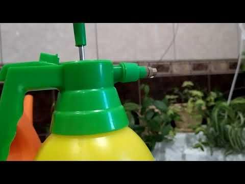Вопрос: Из чего сделать самому удобрение для кактусов без азота?