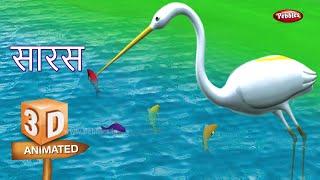 Stork Rhyme in Hindi | Hindi Rhymes For Kids | हिंदी कविता | 3D Bird Rhymes in Hindi